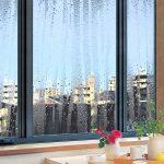 窓の結露はなぜ起きる!? 5分でわかる冬の結露対策