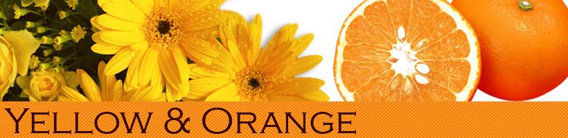 オレンジ&イエロー 橙色&黄色