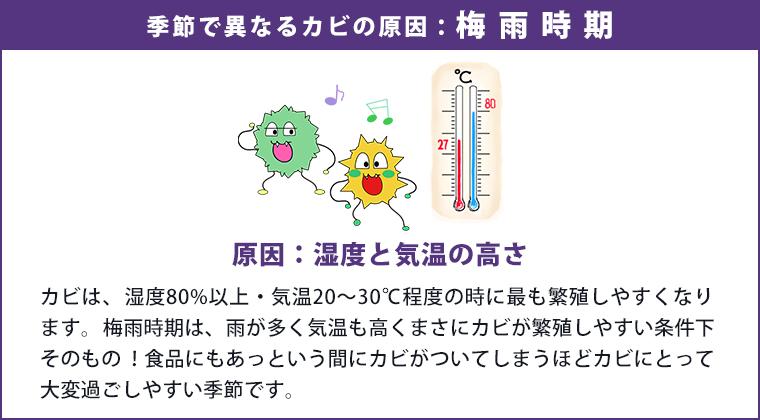 季節でことなるカビの原因:梅雨時期
