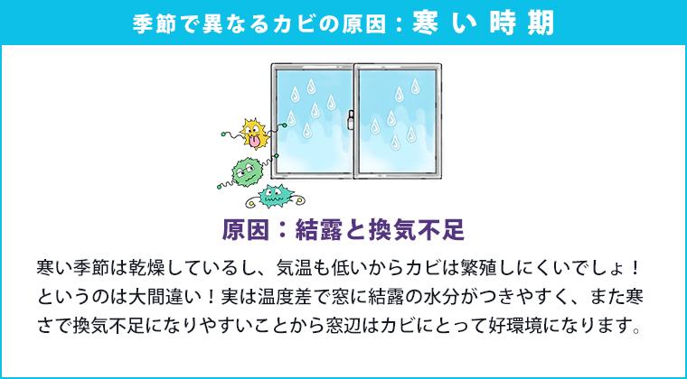 季節でことなるカビの原因:寒い時期