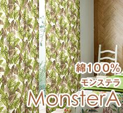 綿100%のモンステラ