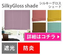 SilkyGloss Shade(シルキーグロスシェード)